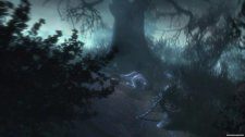 Shiver  3:  Moonlit  Grove  Collector's  Edition  (Полная  версия/ENG)